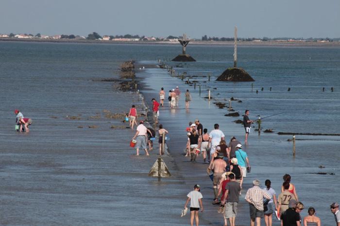 Pêche à pied en Vendée